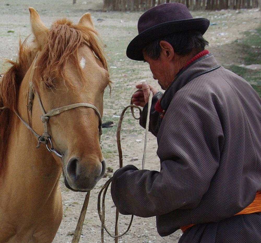 Minds meet, man & mare