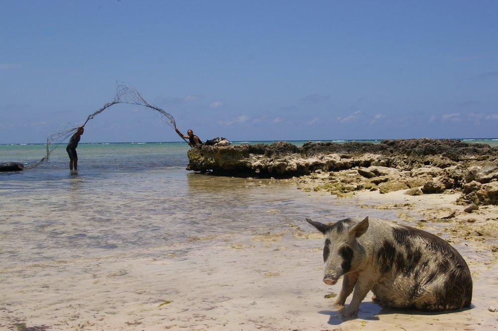 Fisherman in Herradura, Cuba