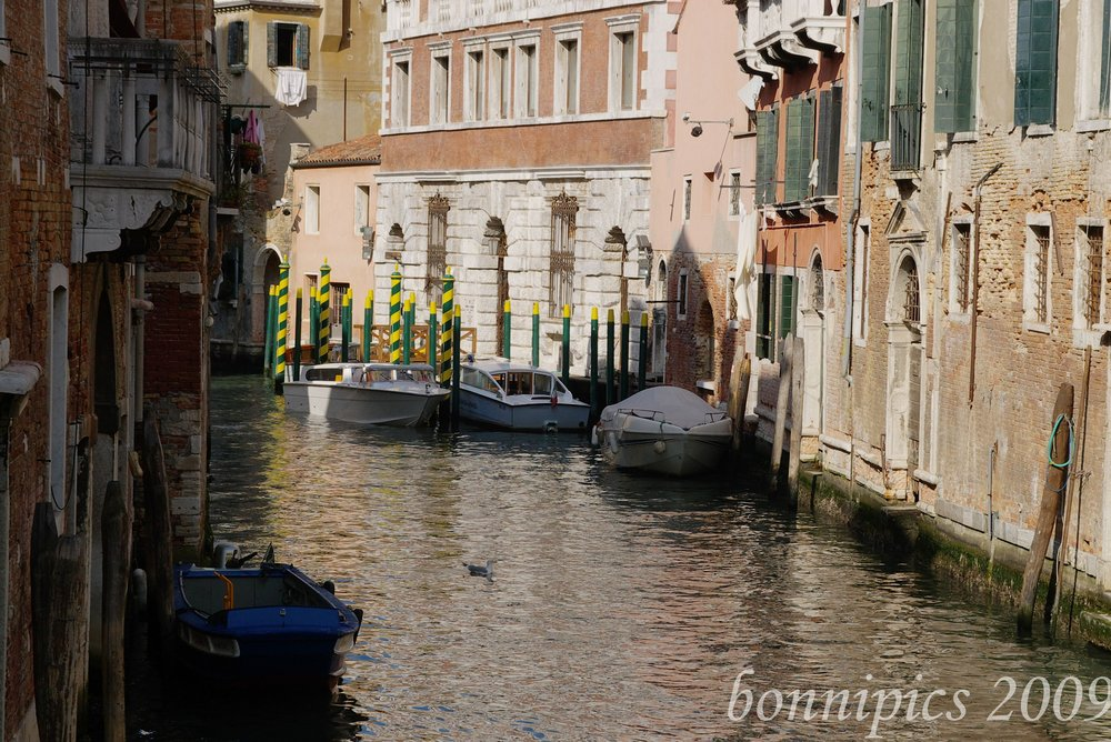 Your Local Venice Street - no speed bumps here!