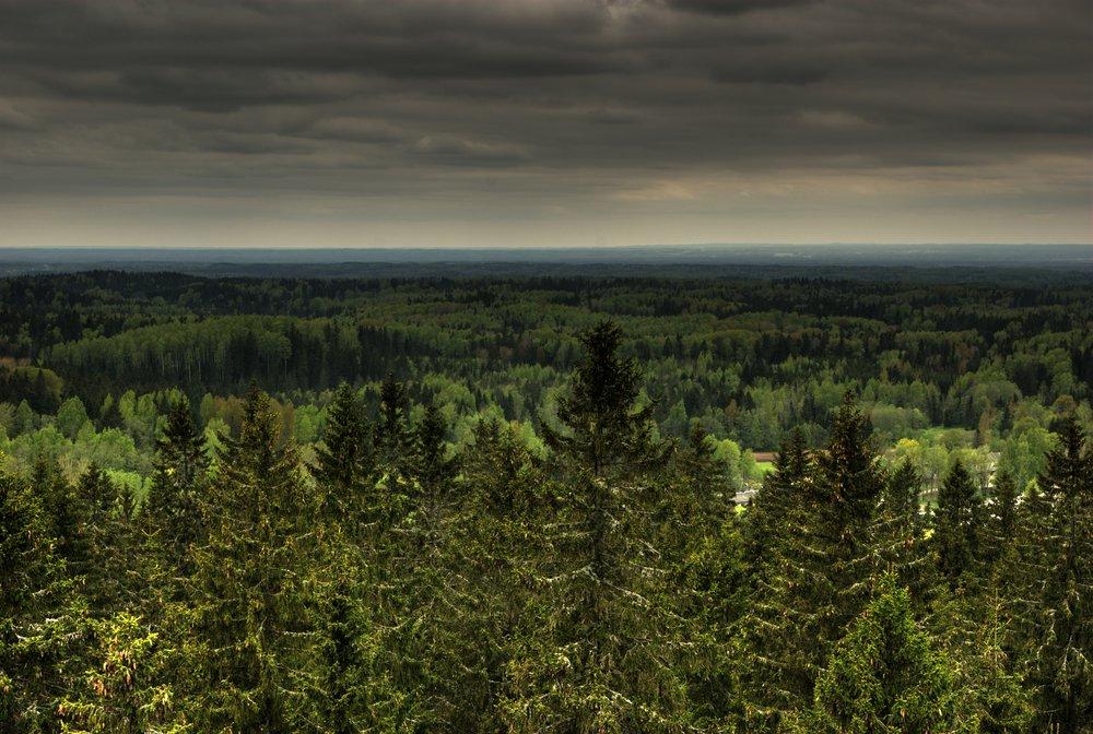 Estonia-Suur Munamägi