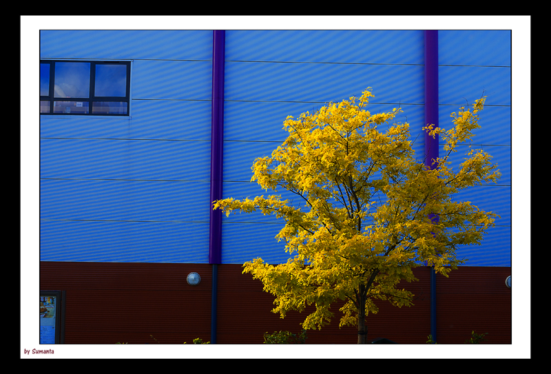 Colours by the street