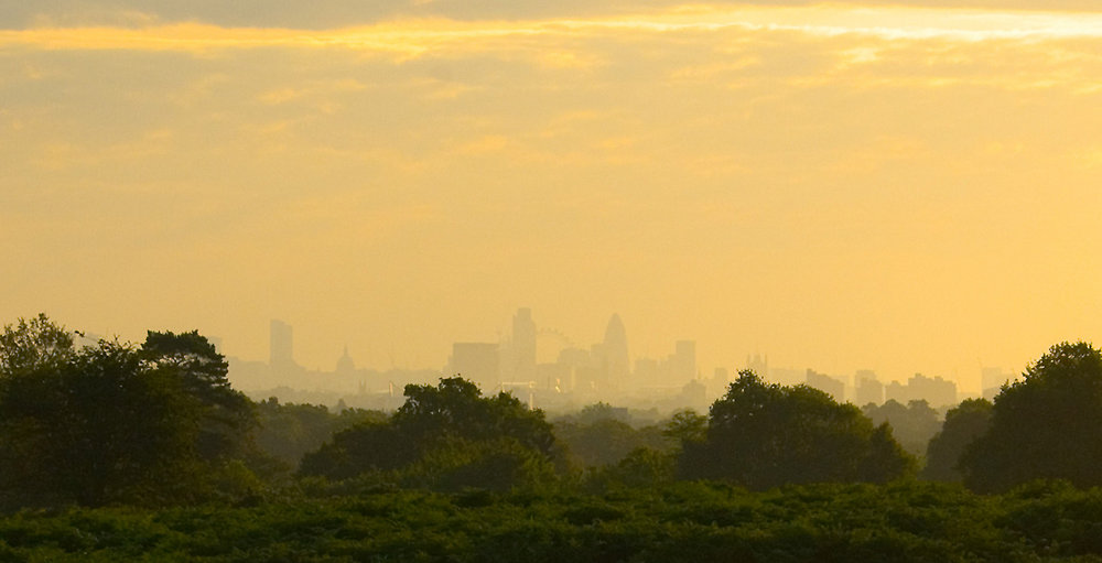 London from the South West (ish)