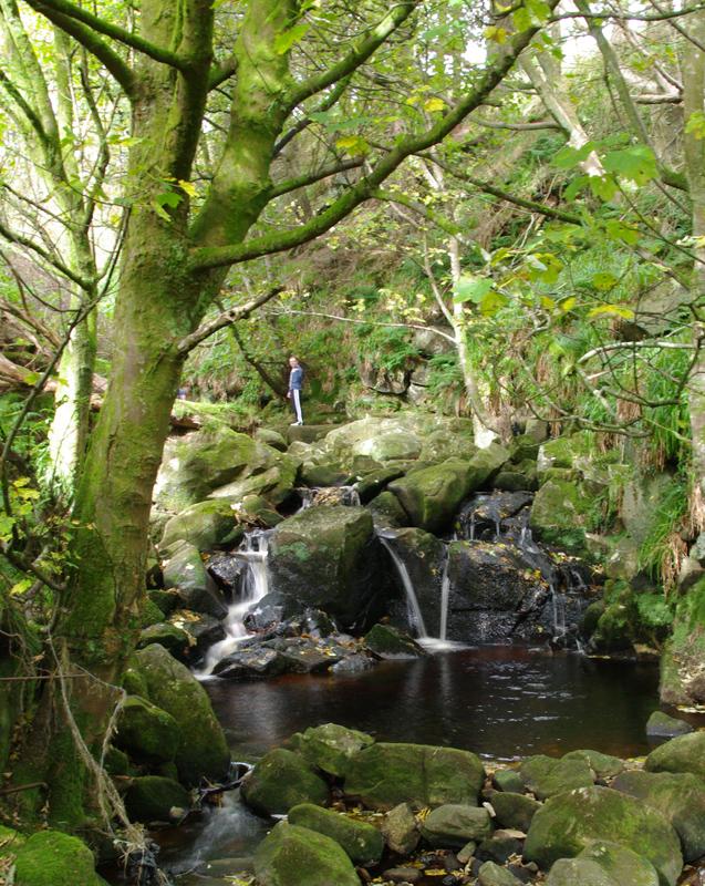 Glencree River