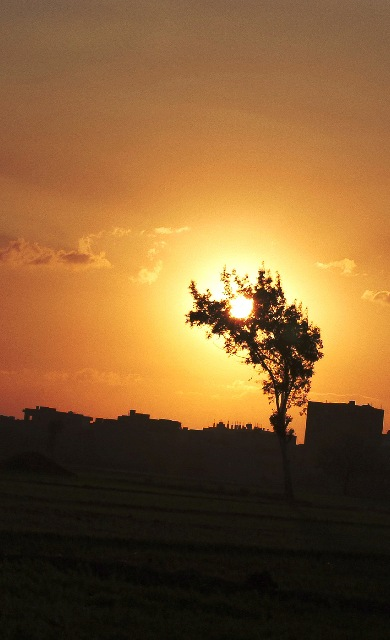 sunset froma small  egypiont village