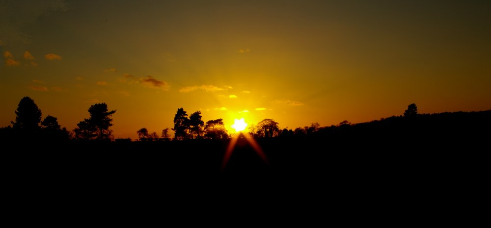 Sunset at Tunstall Forest in Suffolk