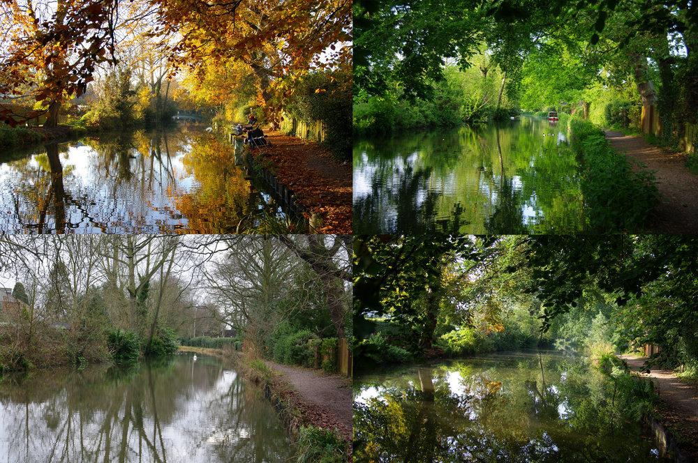 Four Seasons - Source Photos