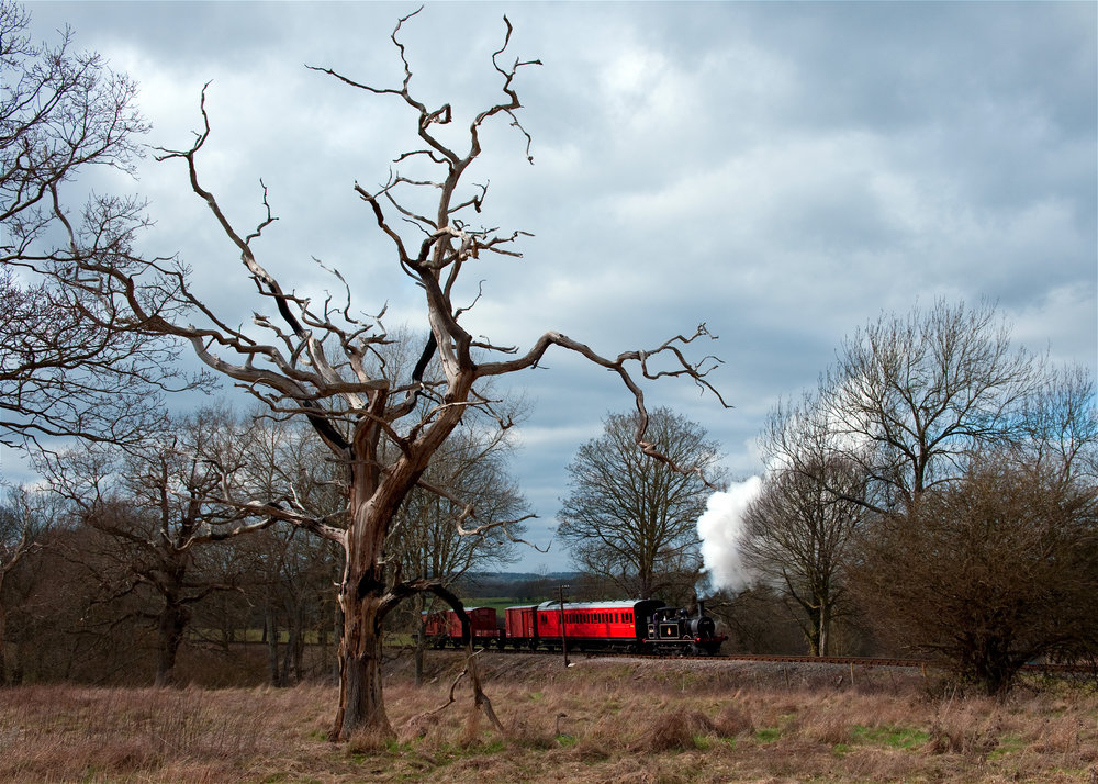 Mixed Branch Line Train