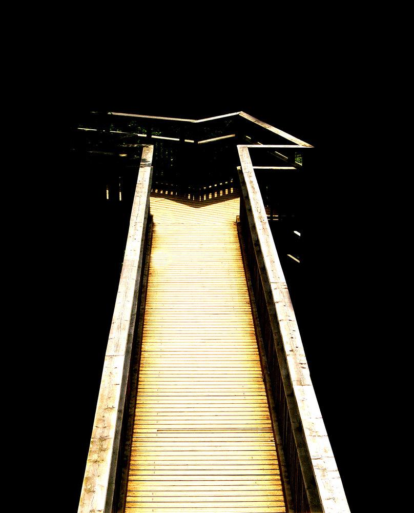 salcey bridge