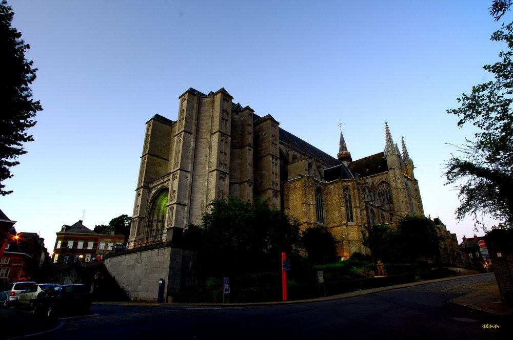 Sainte-Waudru cathedral