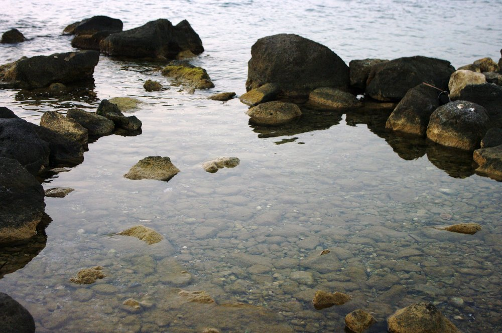 Shallow Water on Top of Rocks