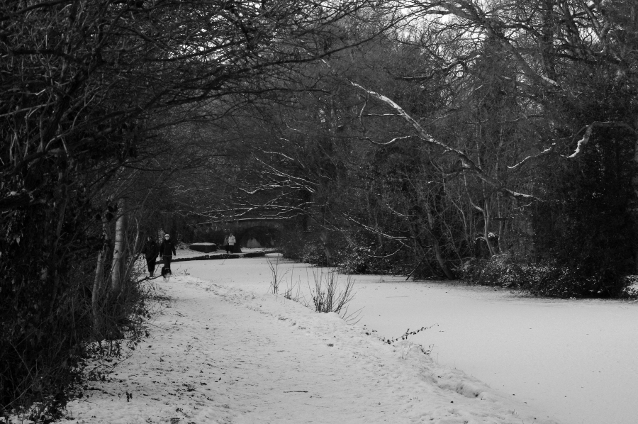 A cold walk along the canal