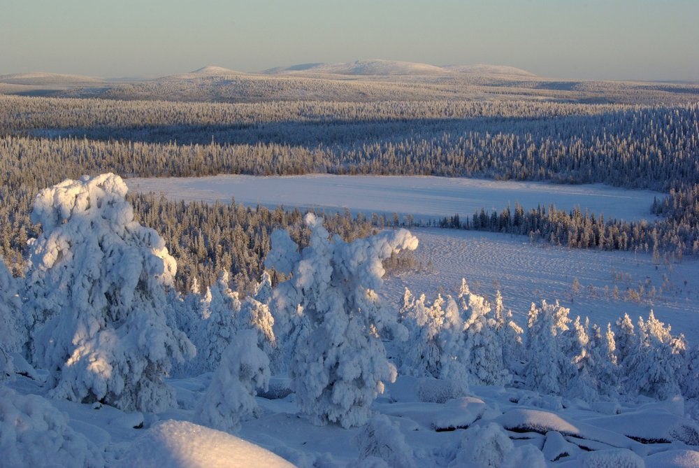 A normal vision from Lapland