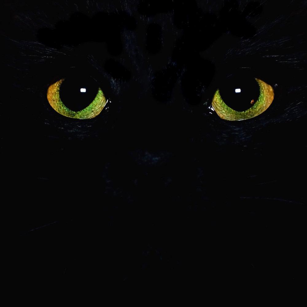 Molly's eyes...
