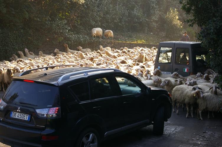 Traffic Jam on the Appian Way near Rome