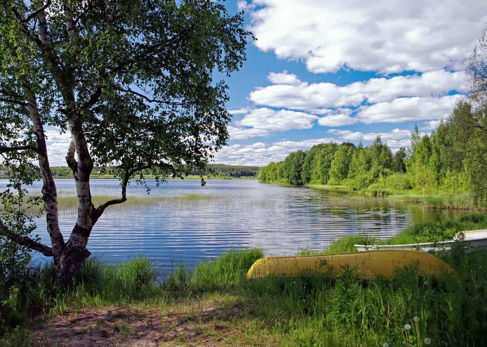 Northern View of Lake Palokka, Finland  (HDR)