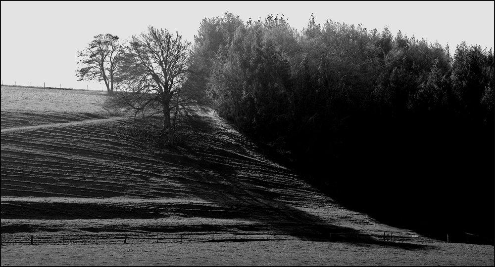 Shadows Down The Hillside.