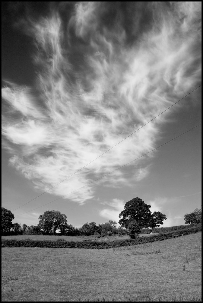 Cornish Cloud Study