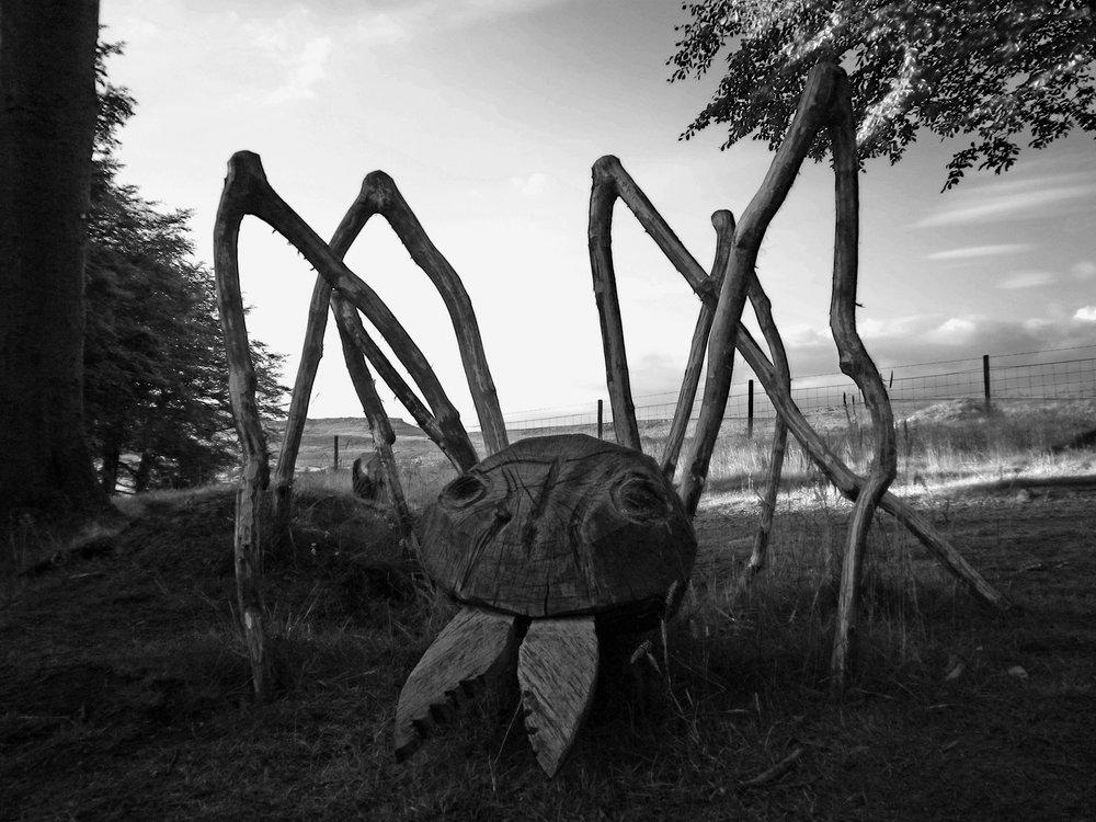 Longshaw Ant