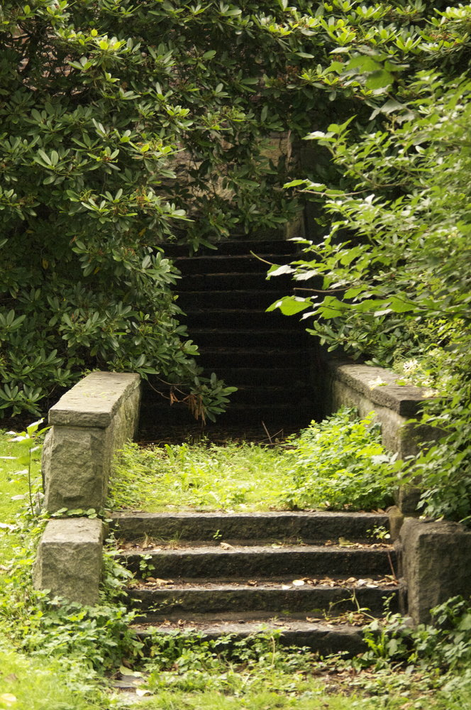 The stairs not taken...