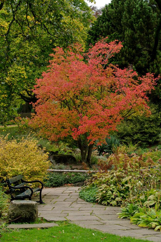 Autumns coming
