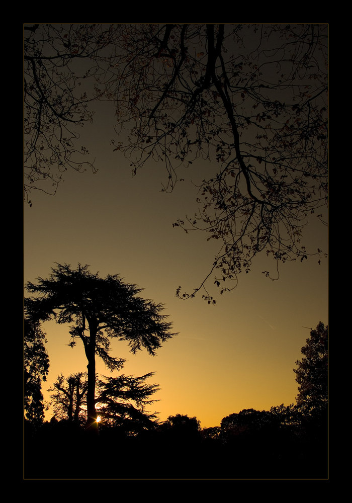 Sunset at Walpole Park