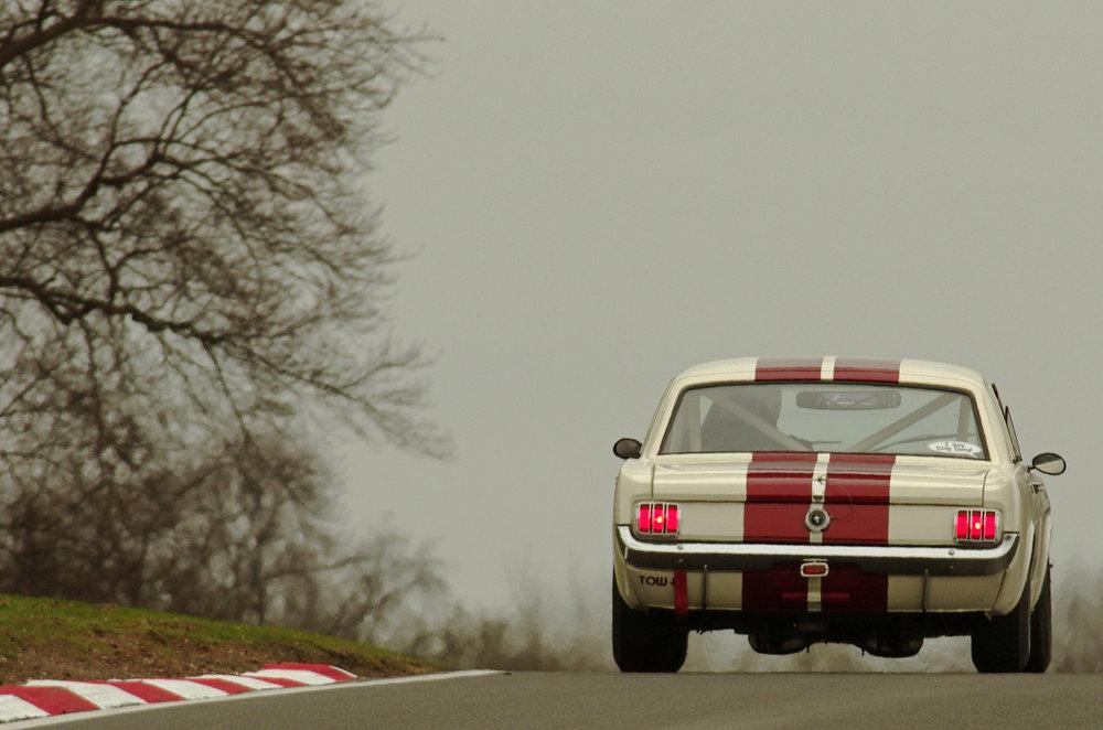 Mustang salvo