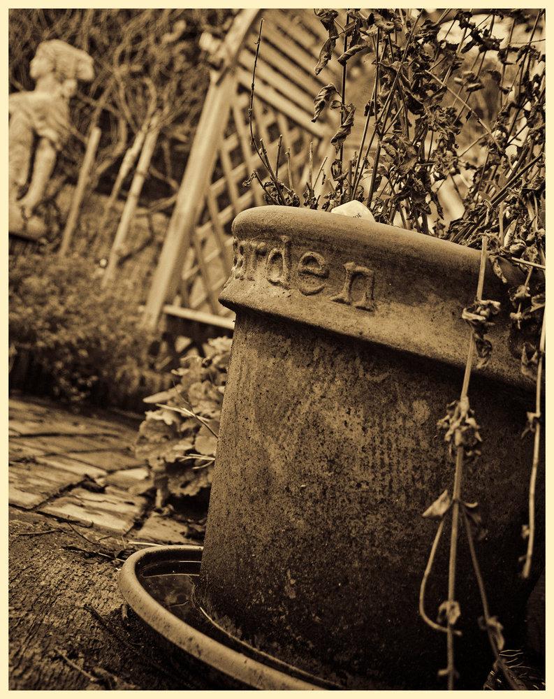 The garden pot.