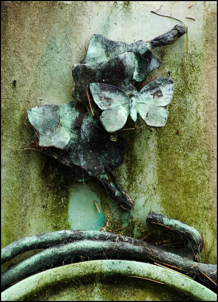 Verdigris Butterfly