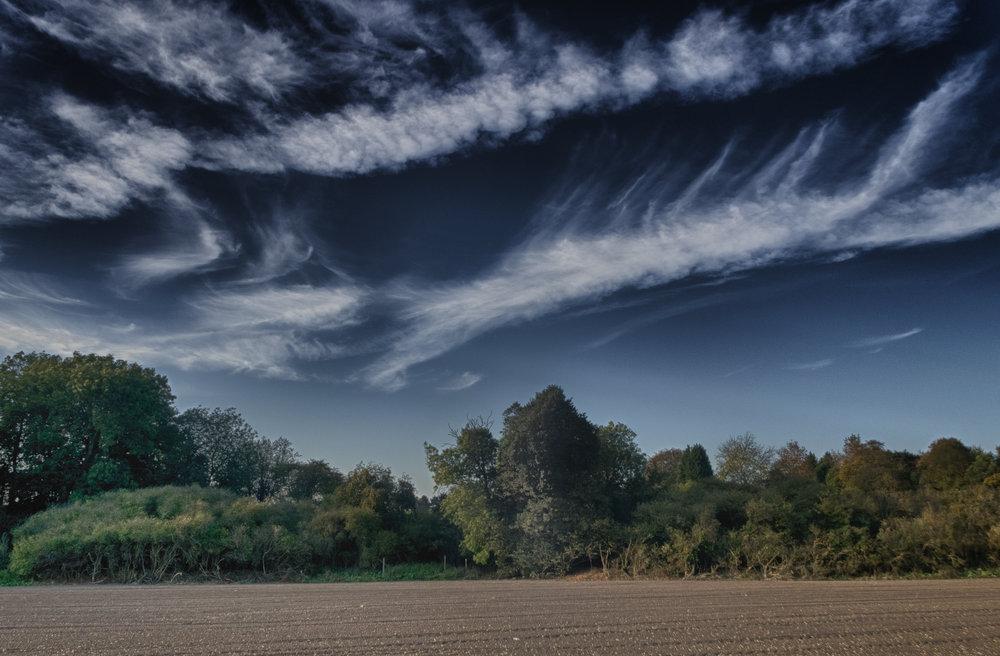Field of Clouds