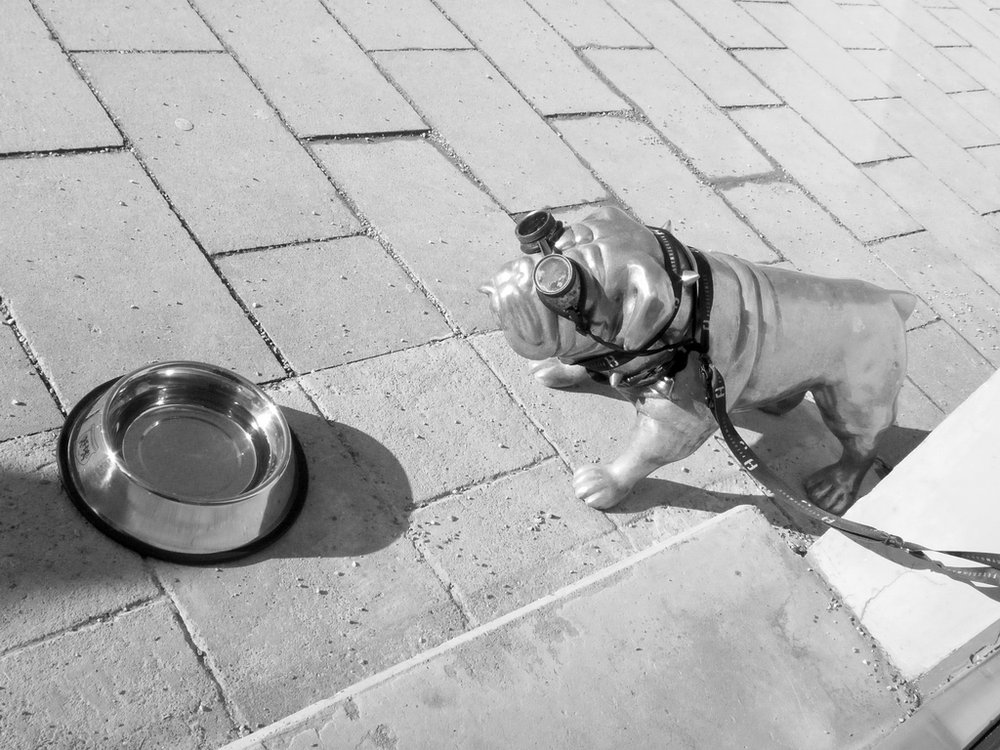 Metal Guard Dog