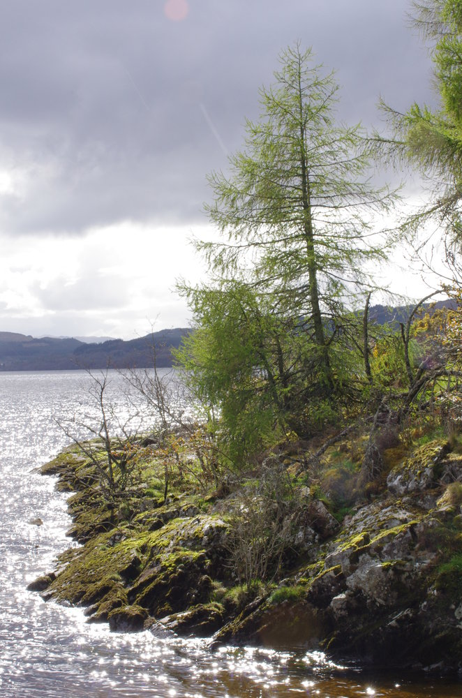 A Highland loch, last week