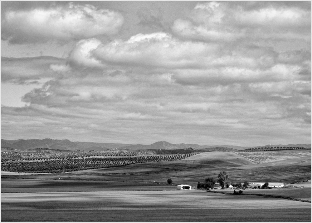 Another Farm in Andalusia