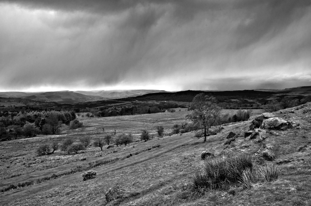 From Longshaw
