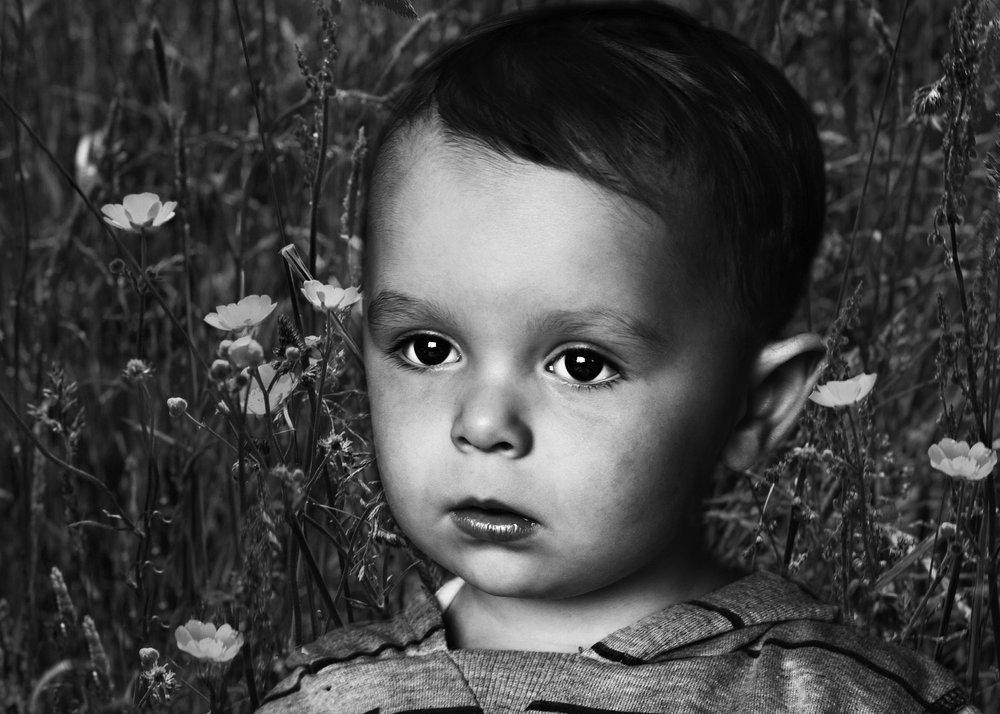 Wild flower boy
