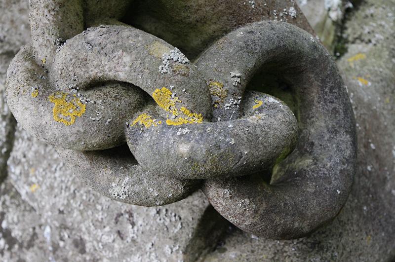 Lichen on gravestone