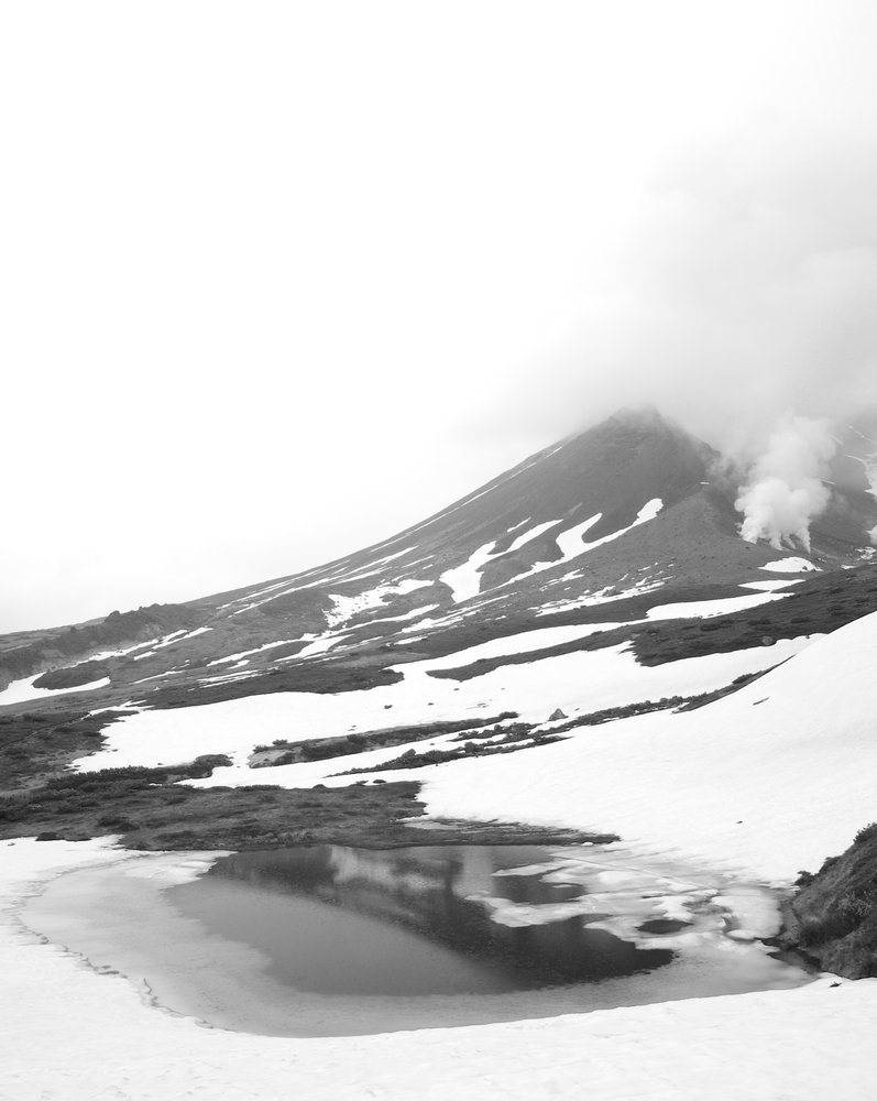 Snow in Summer