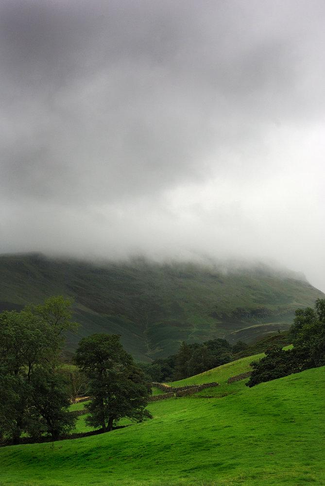 Trees & Mist Covered Fells
