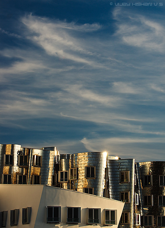 Gehry's Silver Dream