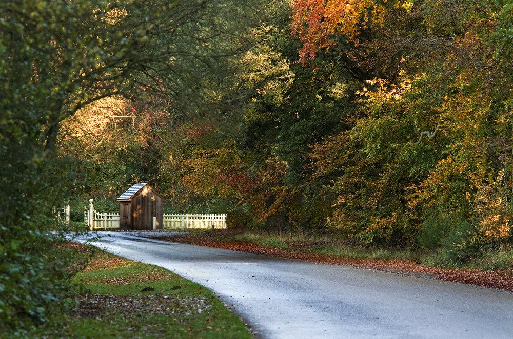 Lane to Hut & Gate