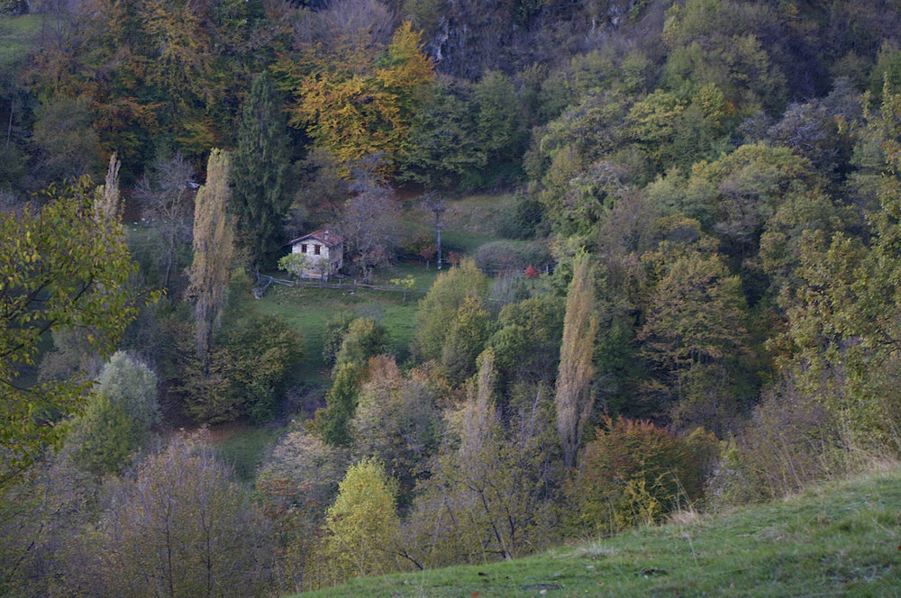 A small house down the valley