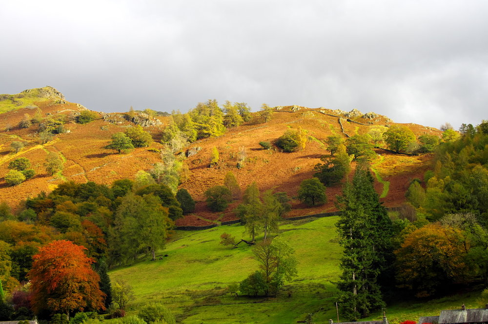 Grasmere country on that dull day