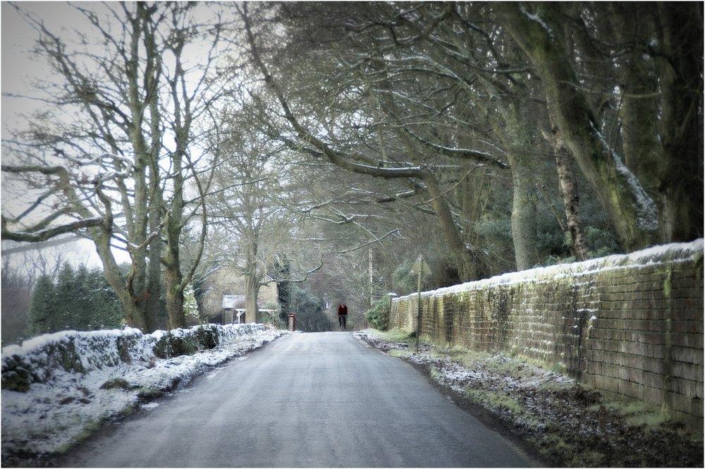 A Winters Lane