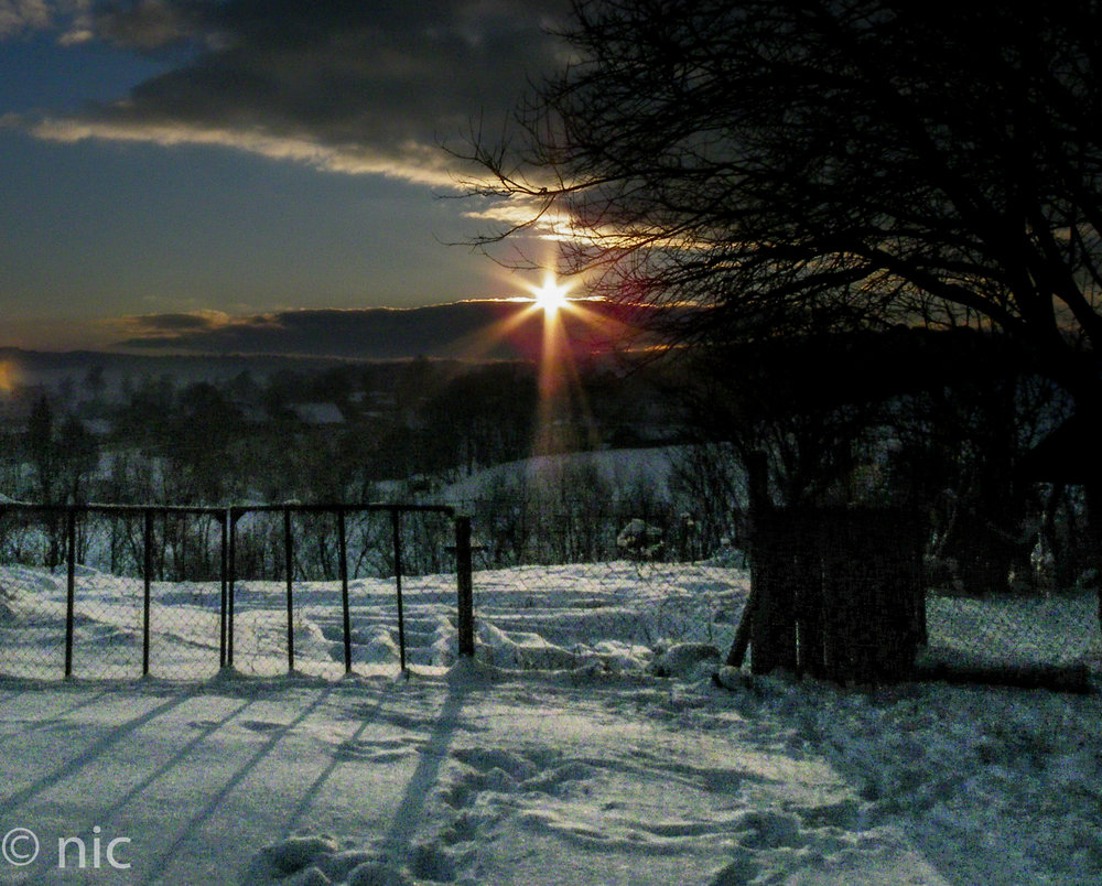 backyard sunset!
