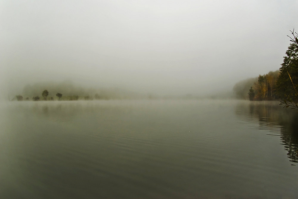 Lake in the Morning Fog