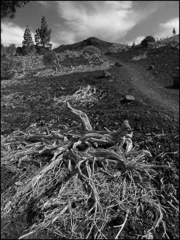Volcanic Lanscape