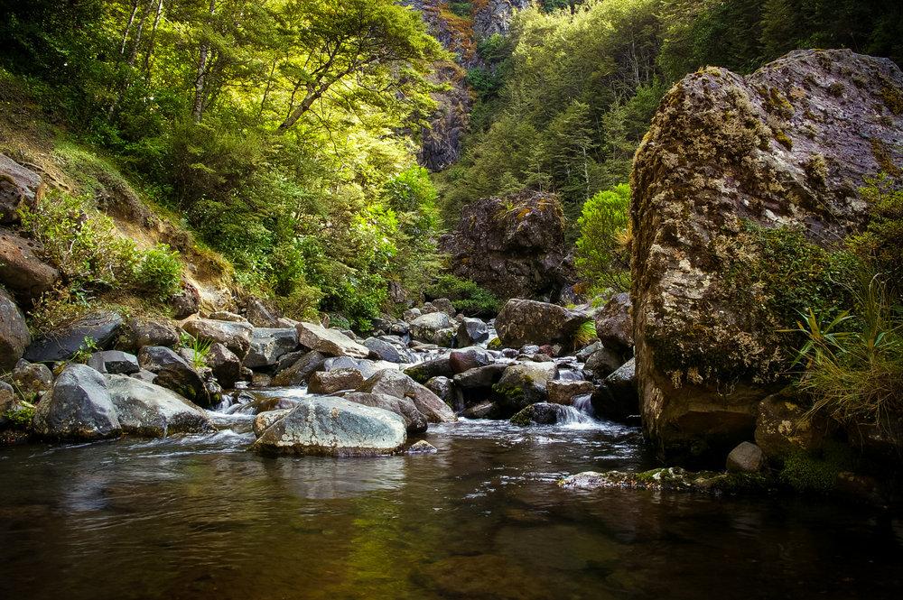Mt Ruapehu - Waitonga Falls Track