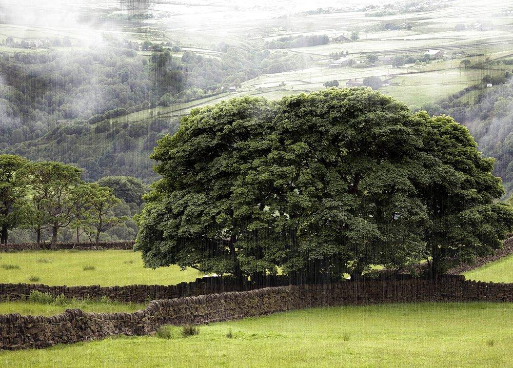 Rain in the Calder Valley