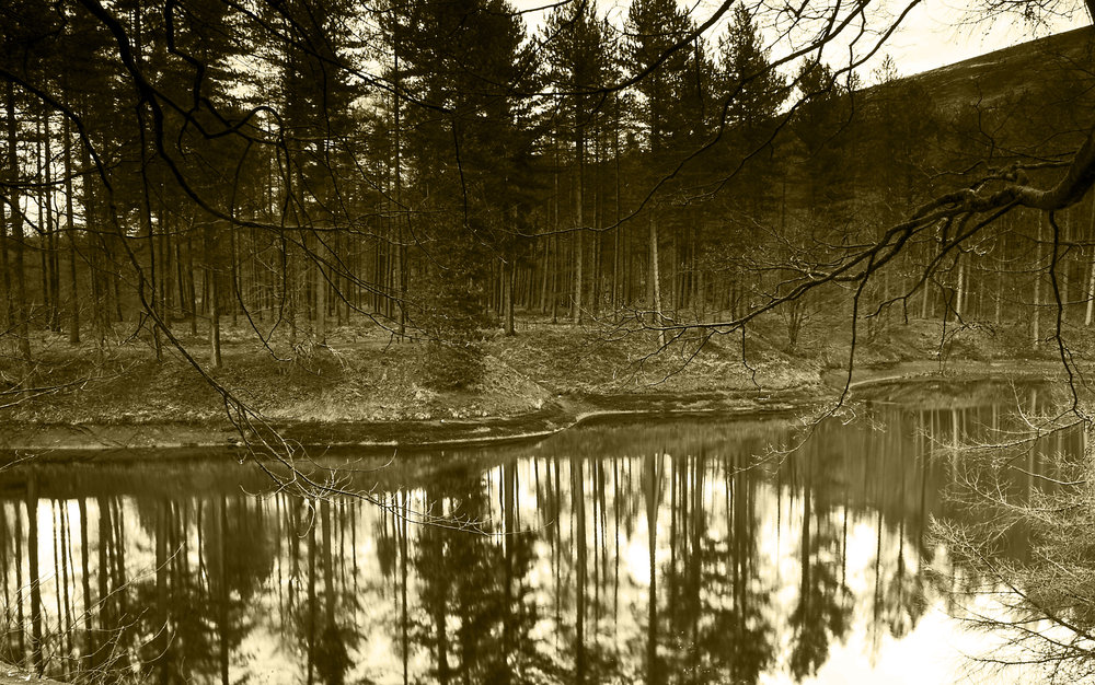 Reflections 3