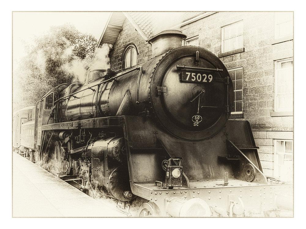 Engine 75029