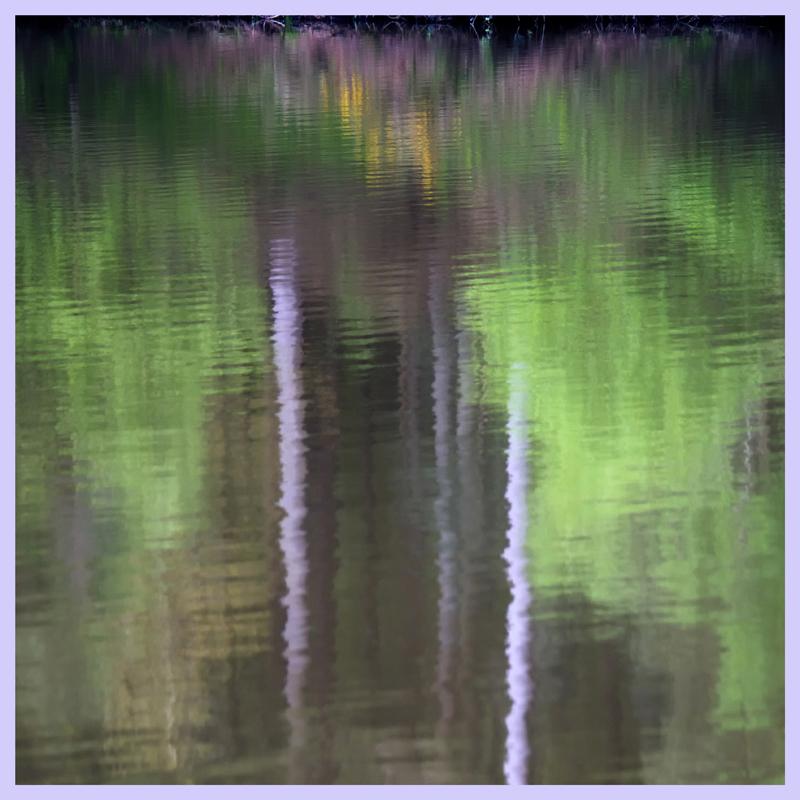 Reflecting Trunks